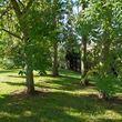Garden mix – trees in garden