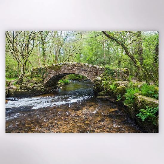 Woodland Trust - Bovey Valley Woods jigsaw