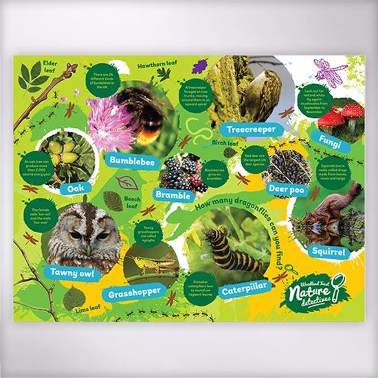 What's Hiding in the Woods jigsaw