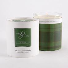 Isle of Skye Scots Pine candle