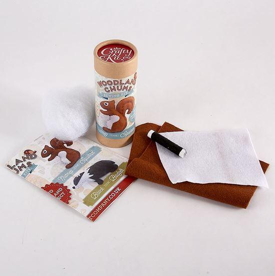 Nutmeg the Squirrel craft kit