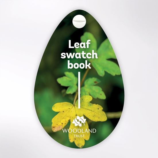 Woodland Trust swatch book - Leaf