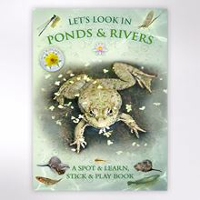 Let's Look in Ponds and Rivers book