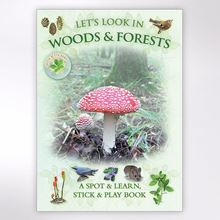 Lets Look in Woods and Forests Book