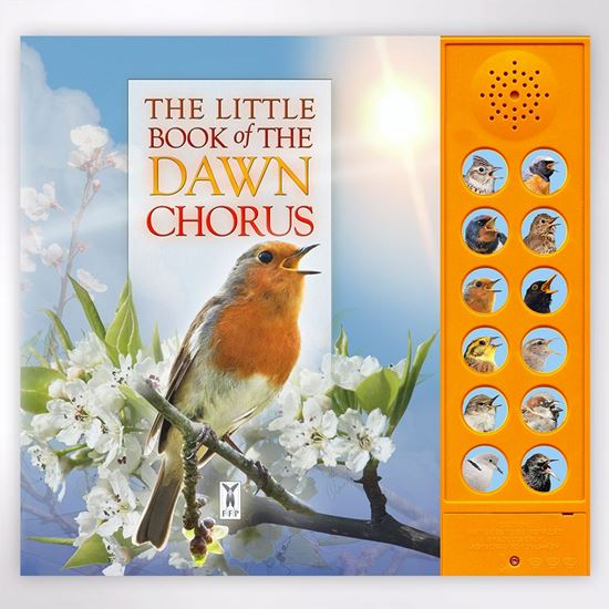 Little book of dawn chorus