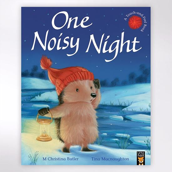 One Noisy Night children's book by Tina Macnaughton and M Christina Butler.