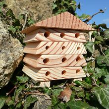 Minibugs Bertie's Bee House