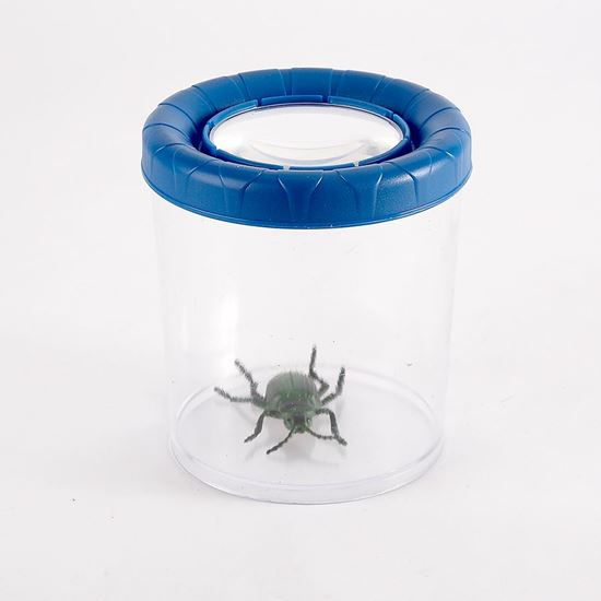 Mega bug viewer with magnifier