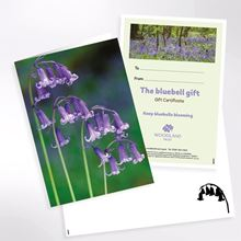 Keep bluebells blooming virtual gift