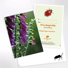 It's a bug's life gift pack