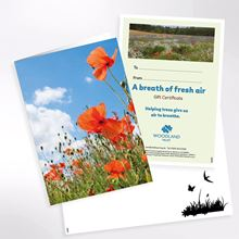 A breath of fresh air gift pack