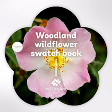 Woodland Trust swatch book - Wildflowers