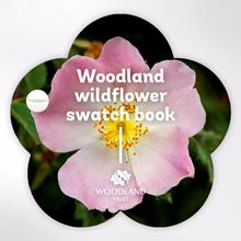 Woodland Trust swatch book - Wildflowers