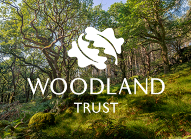 Picture for category Woodland Trust gifts