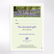 Picture of Keep bluebells blooming