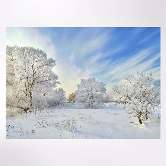 Blue Skies Christmas cards pack of 8