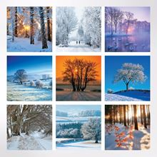 Trees in Winter Christmas cards pack of 8