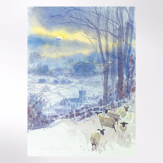 Sheep in the Valley Christmas card pack of 8