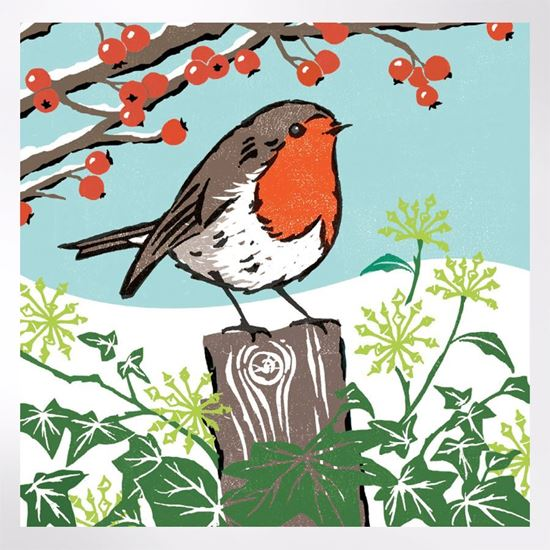 Robin Redbreast Christmas cards pack of 8