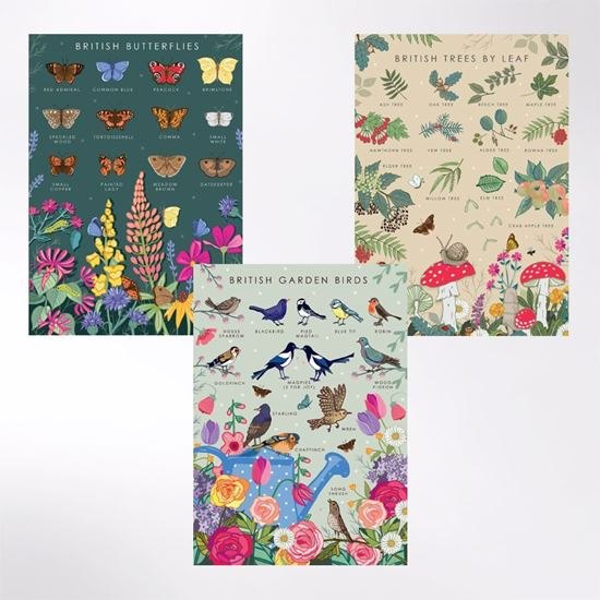 Woodland Trust note cards - trees, butterflies and birds