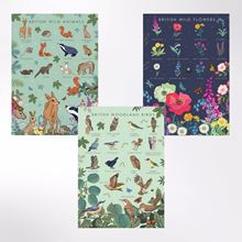 Woodland Trust note cards - birds, wildflowers and animals