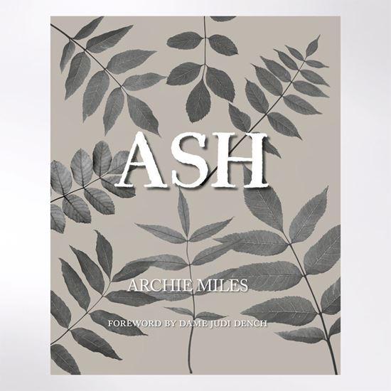 Ash Book