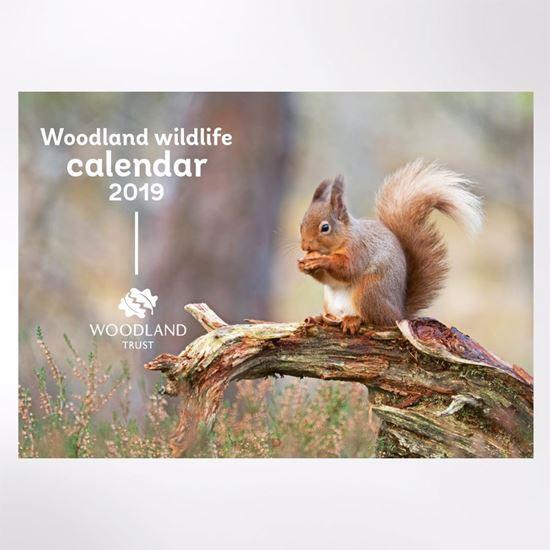 Woodland Trust 2019 Wildlife Calendar
