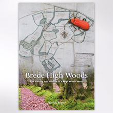 Picture of Brede High Woods book