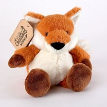 Picture of Jasper the fox