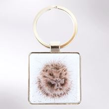 Picture of Wrendale Designs Awakening Hedgehog Keyring