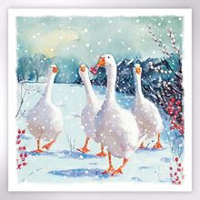 Picture of Waddling geese Christmas cards