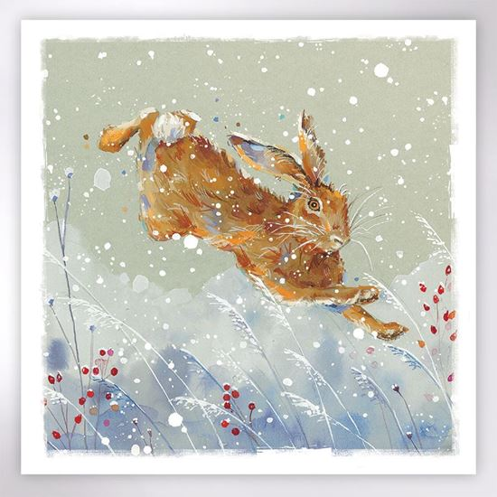 Picture of Leaping hare Christmas cards