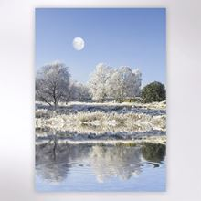 Picture of Winter freeze Christmas cards