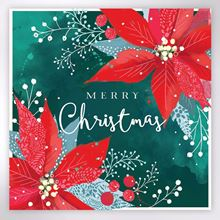 Picture of Poinsettia Christmas cards