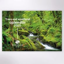 Picture of Woodland Trust trees calendar 2020