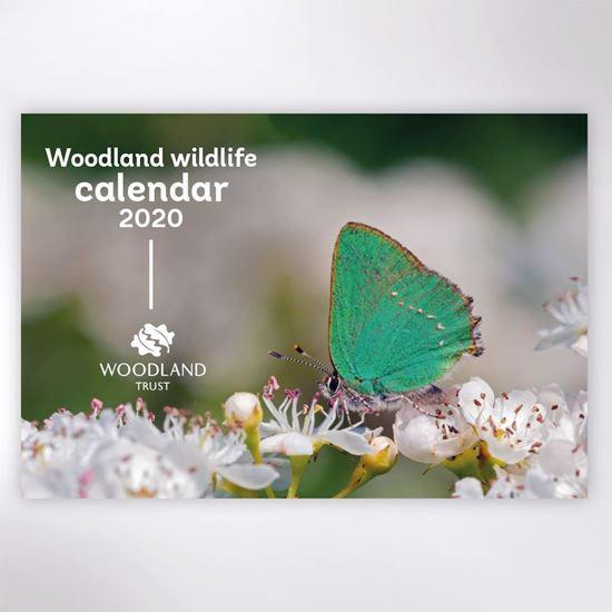 Picture of Woodland Trust wildlife calendar 2020