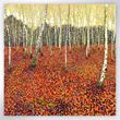 Picture of Woodland Trust large note cards