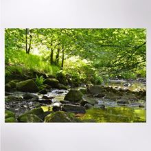 Picture of Sunlit stream, Smithills Estate jigsaw