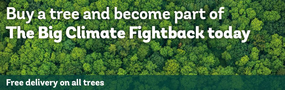 Buy a tree as part of the big climate fightback