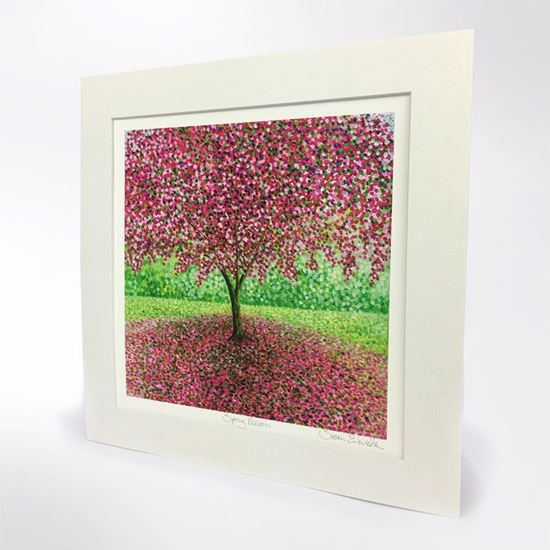 Picture of Susan Entwistle spring blossom print
