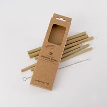 Set of 6 bamboo straws with wire cleaning brush