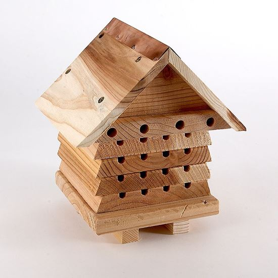 Interactive solitary beehive made with durable FSC timber