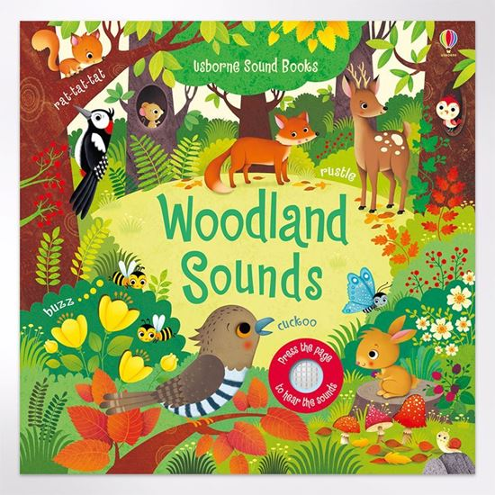 Woodland Sounds - press a button and hear the woods come to life