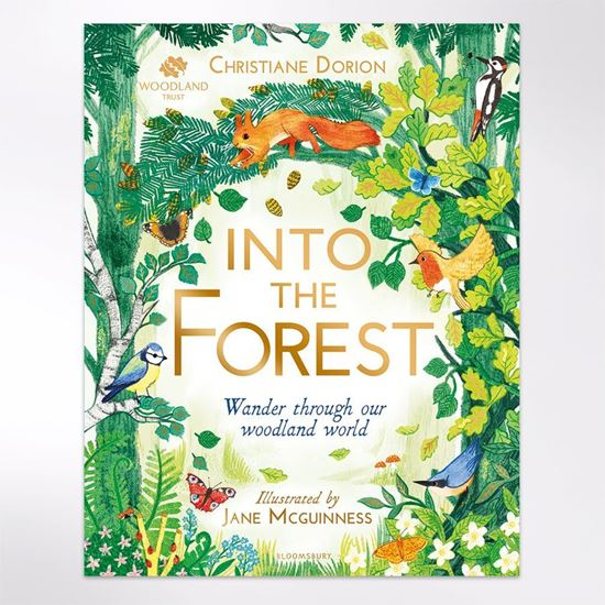 Into the Forest book