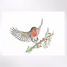 Robin on holly Christmas cards