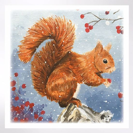 Squirrel and berries Christmas cards