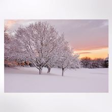 Sunset and snow Christmas cards