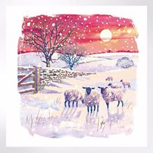 Shepherd's delight Christmas cards