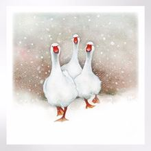 Geese in snow Christmas cards