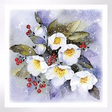 Hellebores and berries Christmas card
